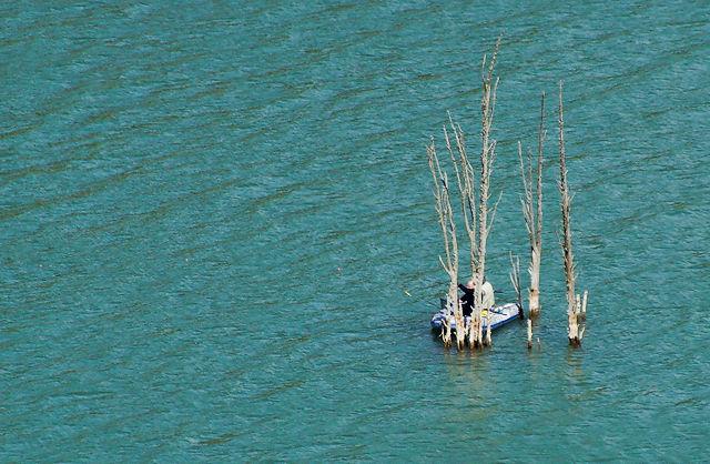 Lac du Salagou, was so übrig bleibt ~ Angelboot an Baumresten