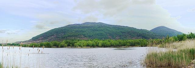 * als die Sonne noch schien ~  Lac du Salagou, Auwald *