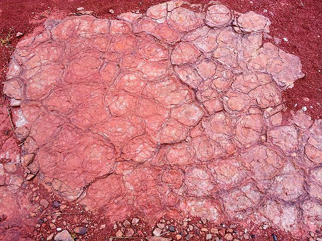 Trockenrisse des Perm oder was? Bin ich Geologe?
