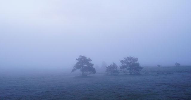 wenig später, Nebel rollt an