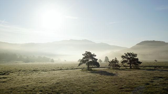 wenig später, Sonne über dem Nebel ~ Schatten und harte Kontraste