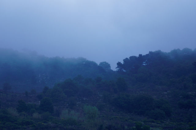 Nebel quillt über den Bergkamm