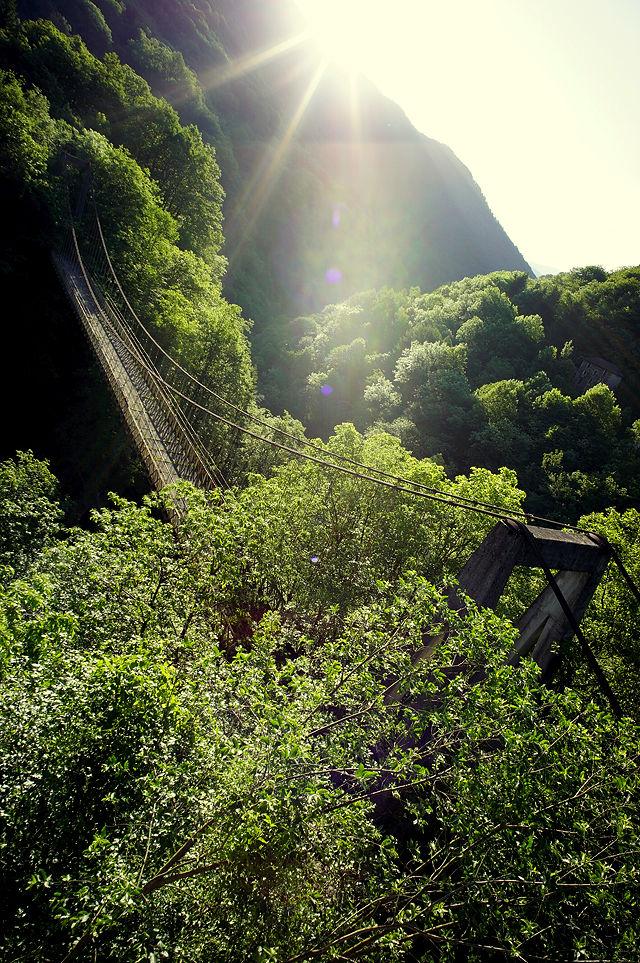 im Morgenlicht ~ Hängebrücke mittlere Generation