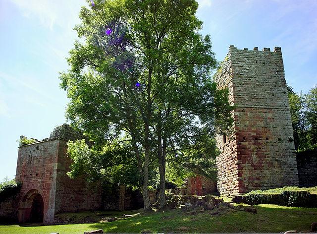 Burg Wildenberg, Innenansicht