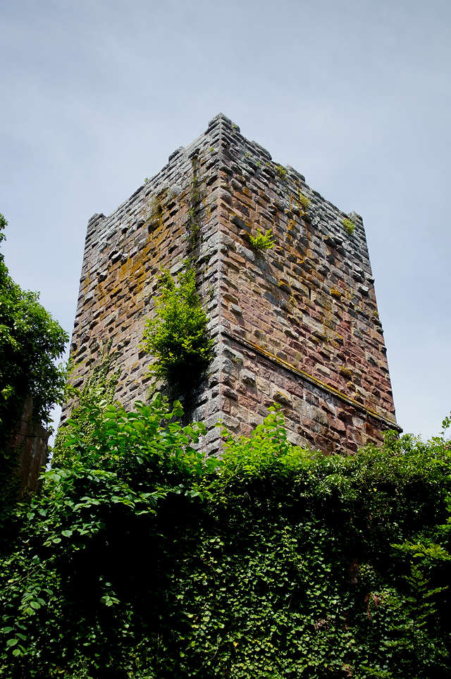 Burg Wildenberg, trutziger Bergfried