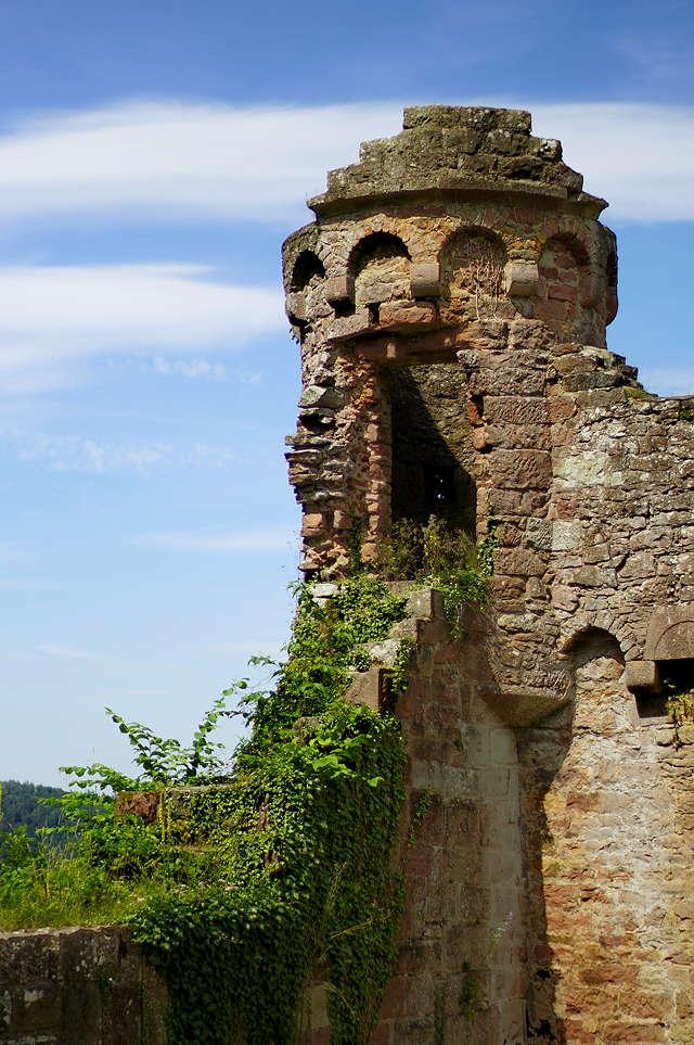 Burg Wildenberg, Wachturm