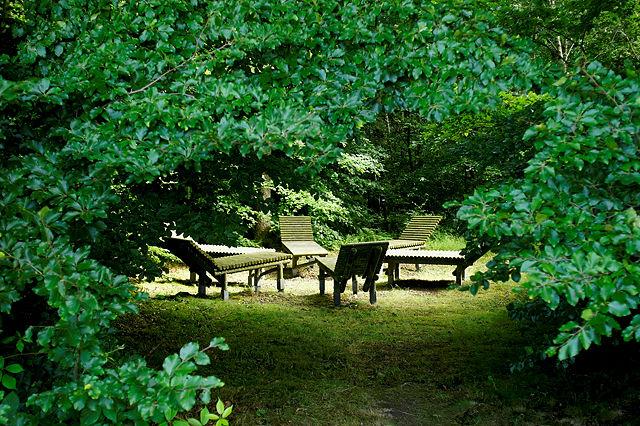 Liegewiese I </br> Bürgerinnen und Bürger machen Kunst in der Landschaft </br>  Alheim 2000