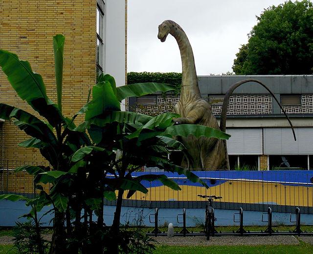 städtische Biodiversivität bei trübem Wetter ~ Bananen und Dinosaurier