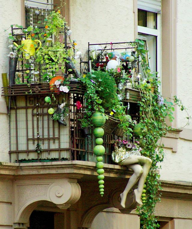 städtische Vielfalt ~ Wildwuchs auf dem Balkon