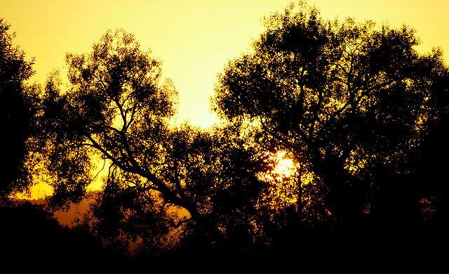 Sonnenuntergang, wieder mal!