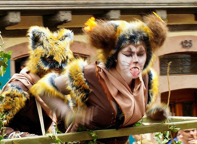 Pfifferdaj ~ da kann man als Katze nur die Zunge rausstrecken!