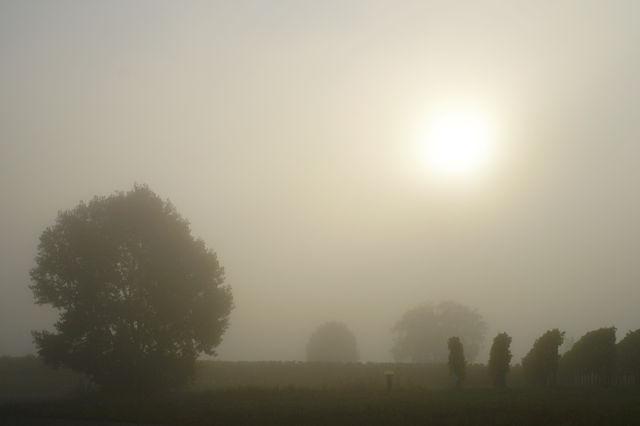 Schafft sie es, schafft sie es nicht? Das Sonnenlicht kämpft sich durch den Nebel . . .