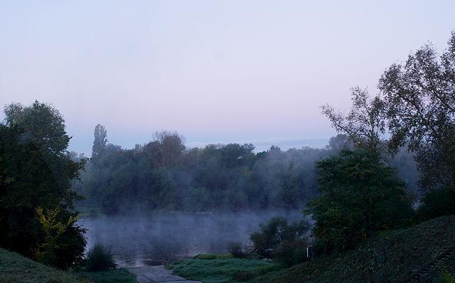 frühmorgens ~ blaue Stunde am Altrhein