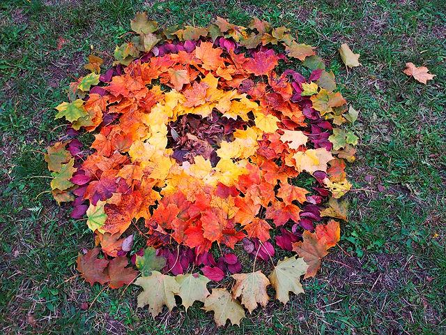 Land Art ~ Herbstfarben