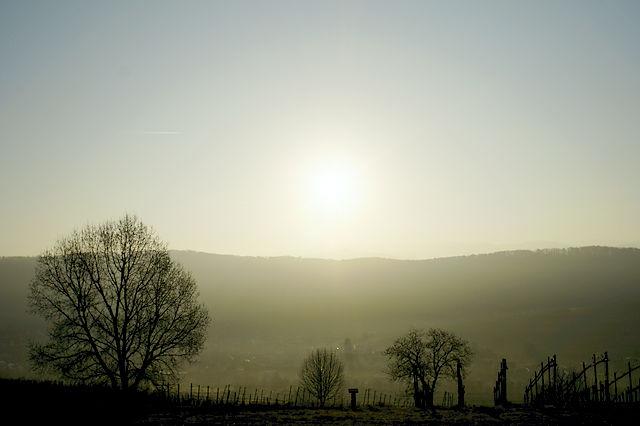 Licht am Horizont :)