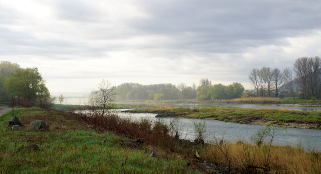 Rhône ~ Morgenbild I