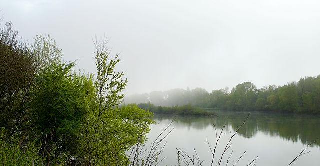 neuer Morgen an der Rhône