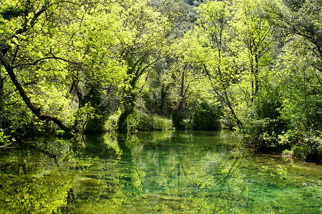 Spiegelungen im stillen Wasser ~ La Buèges