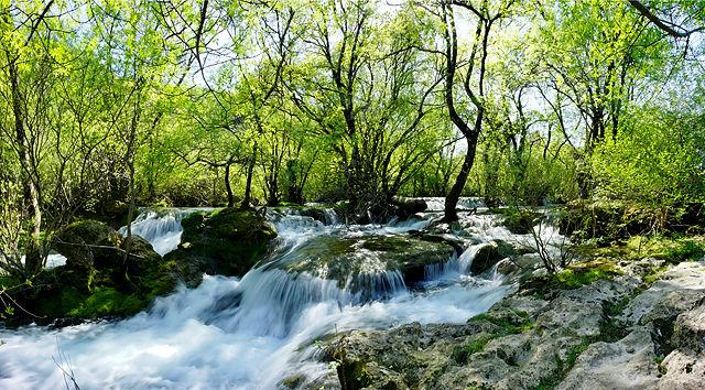 Dynamik ~ wilde Wasser