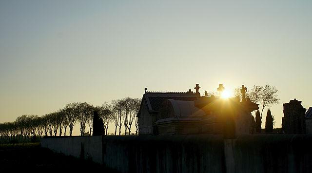 das heutige Morgenbild ~ der Friedhof