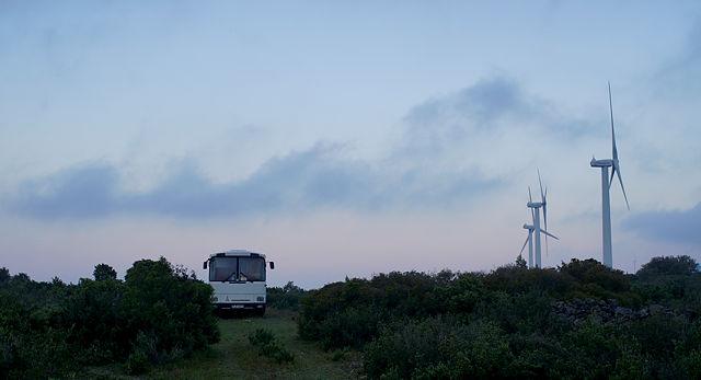 das Morgenbild ~ blaue Stunde