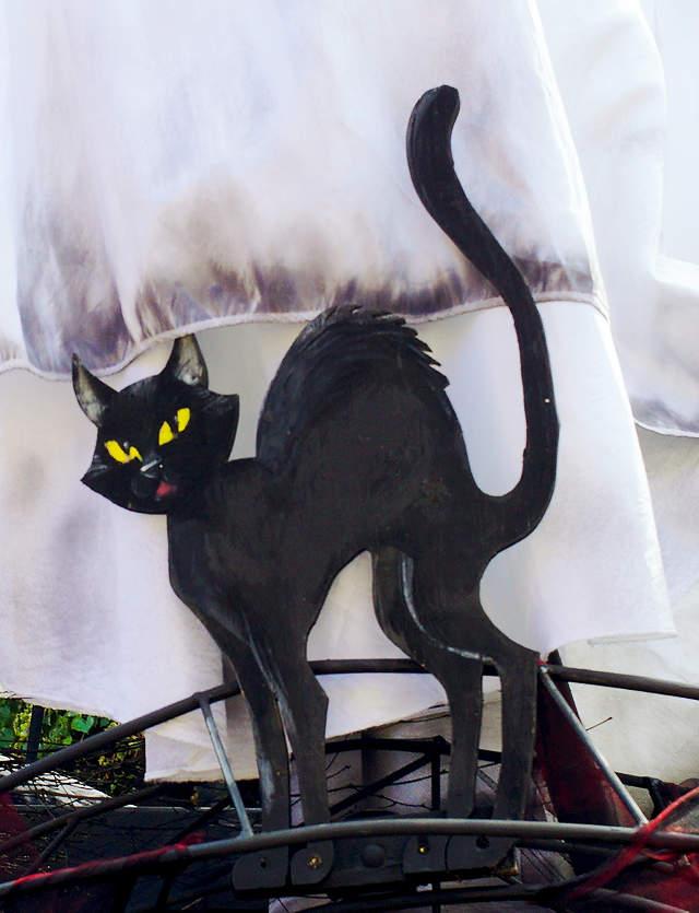 mit dabei ~  die schwarze Katz
