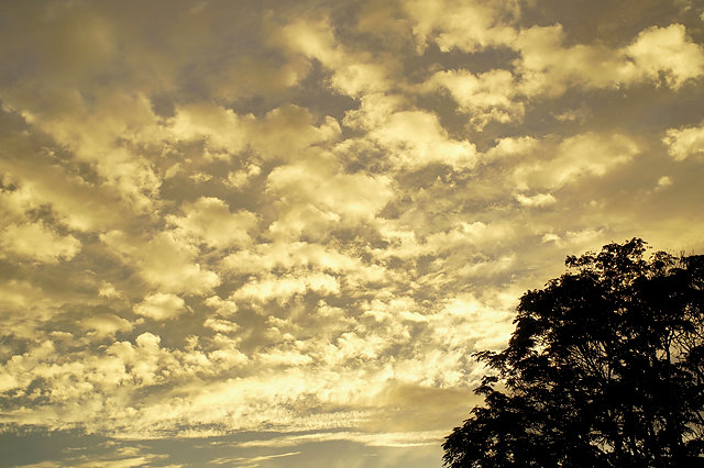 sky, golden