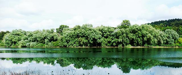Man(n) genießt die Ruhe am Rhein