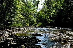 Naturschutzgebiet Lahnknie ~ illegale Aufnahme, denn man darf die Wege nicht verlassen . . .
