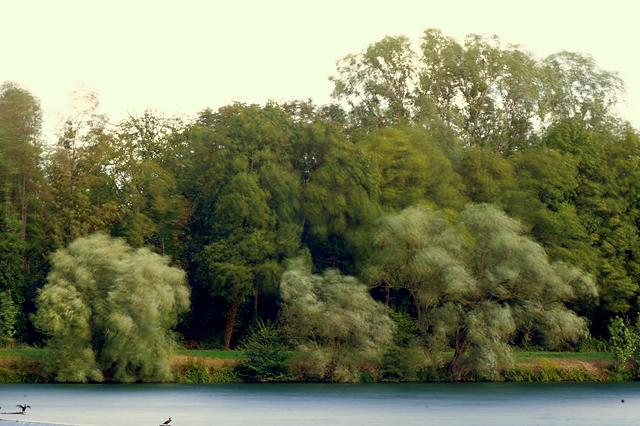 Stormy Sunday ~ 5 Sec am Rhein