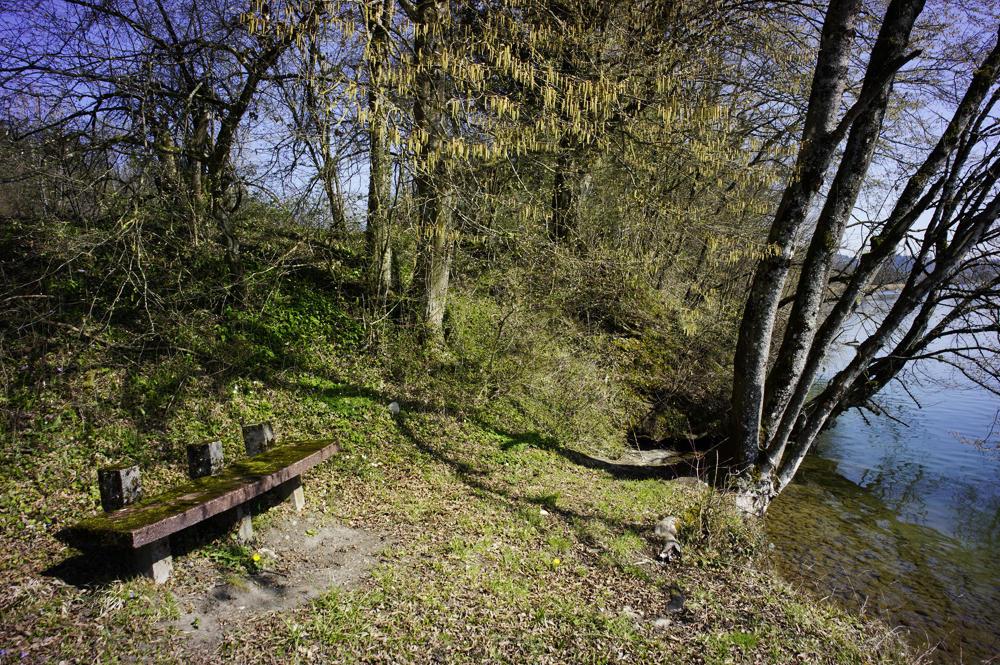 lauschige Ecken am Rheinufer