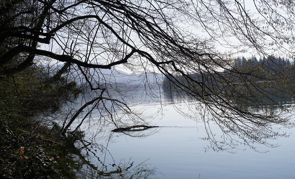 . . . im ruhigen Fluß