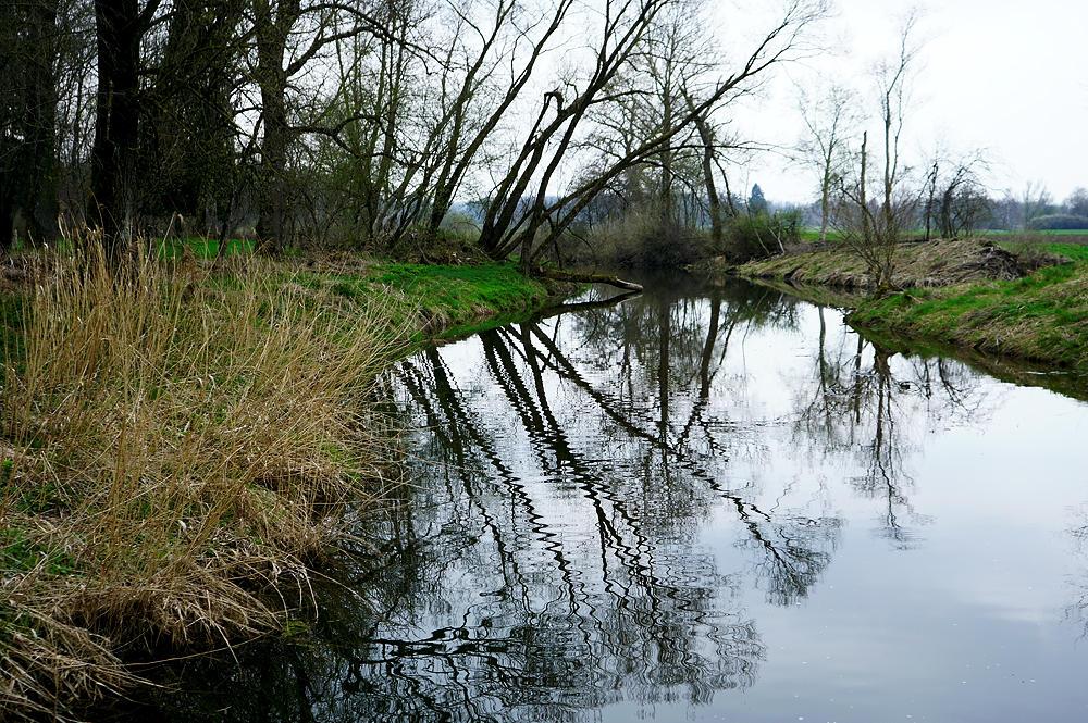 Altwasser der Ammer