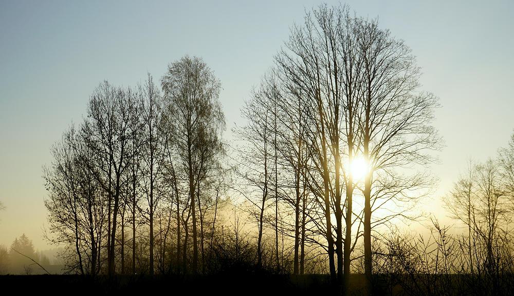 Sonne gleich am Morgen, das tut gut!