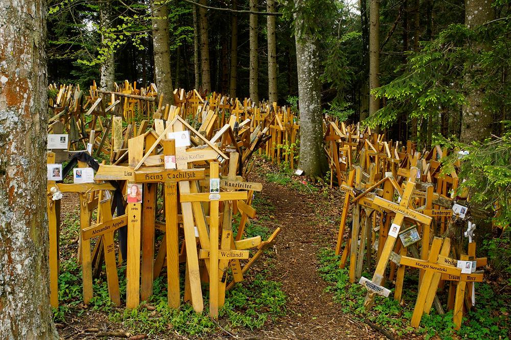 hier in rauhen Massen aufgestellt ~ die provisorischen Holzkreuze