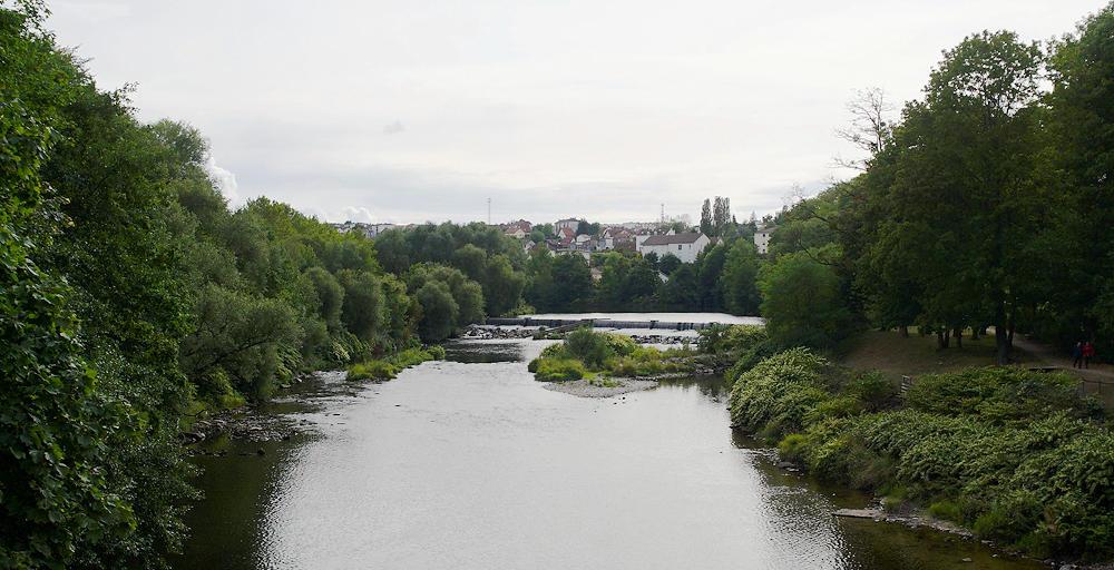 La Moselle hinter Epinal ~ ein wenig wilder :)
