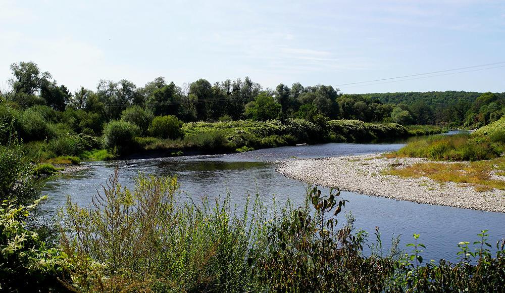 wild mäandernd ~ La Moselle bei Châtel