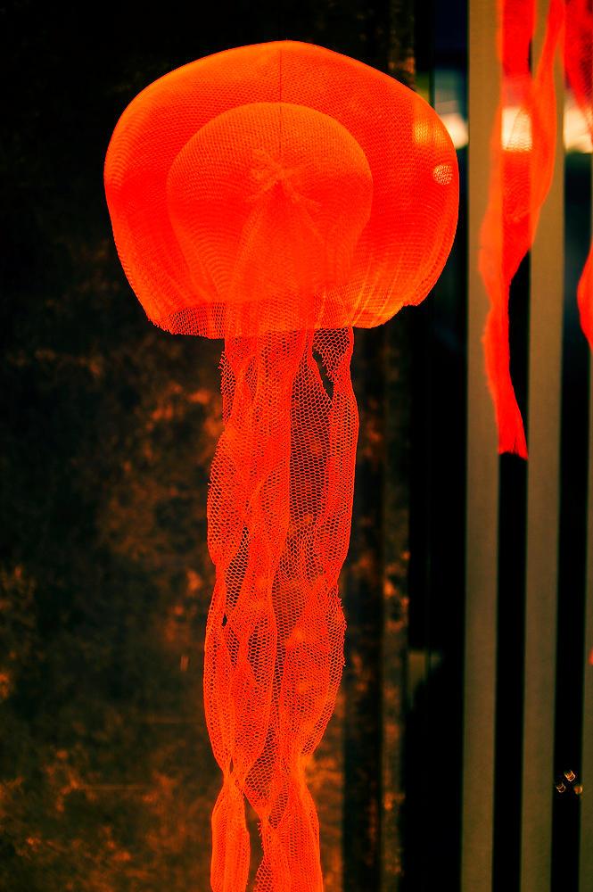 Medusa artifiziell