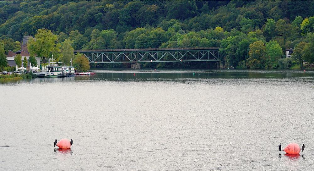 Ruhr ~alte Eisenbahnbrücke bei Kettwig, mitsamt Kormoranen, die es sich gemütlich machen