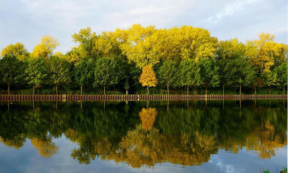 es herbstelt  am Dortmund-Ems-Kanal