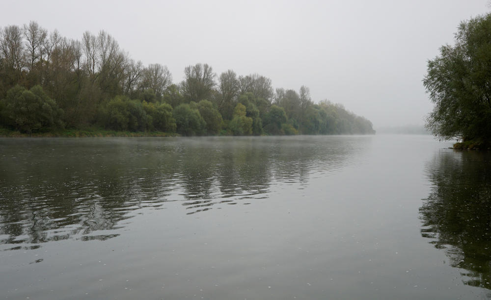 Rhein am Morgen im Herbst ~ trüb, grau, Temperatur nahe 0°C