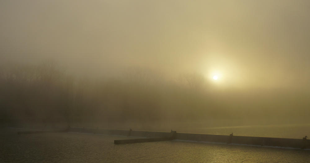 die Sonne, auch von den Kormoranen sehnlichst erwartet