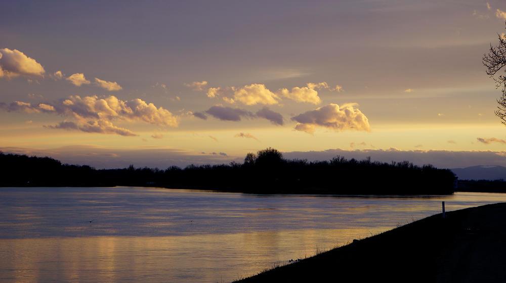 Abend am Rhein . . .