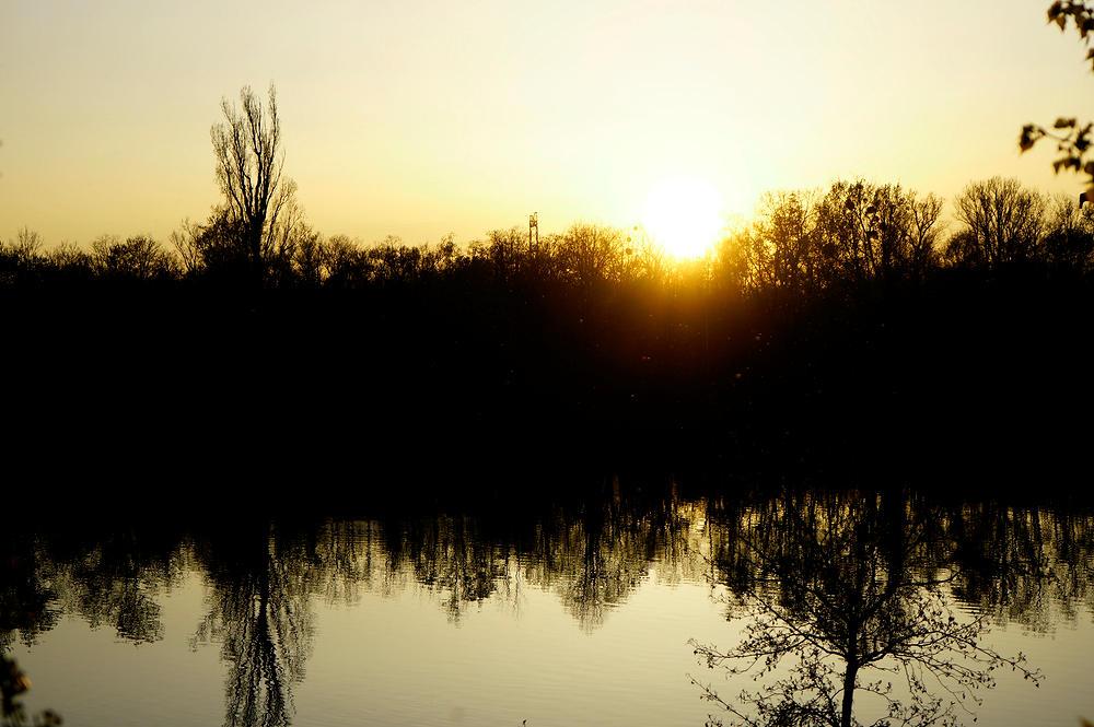 ein goldener Sonnenuntergang am Rhein
