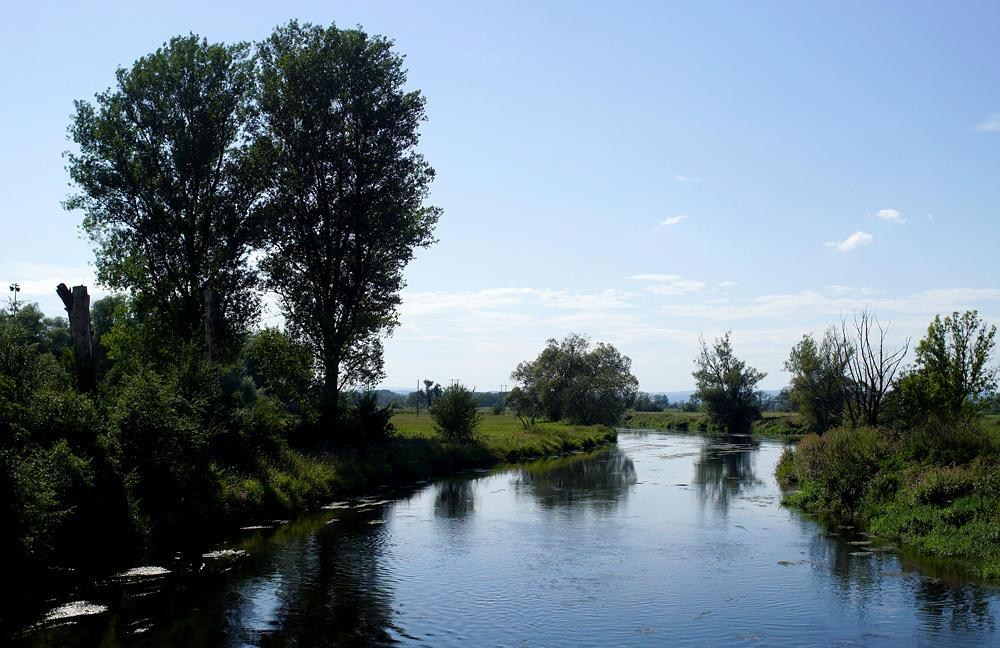 an der Donau bei Gutmadingen