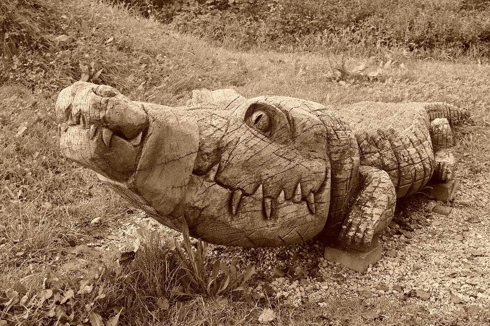 Krokodil ~ gefangen und geknebelt