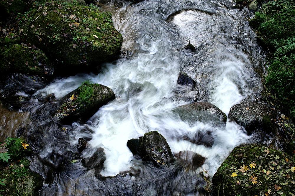 Pesenbachtal ~ bewegtes Wasser