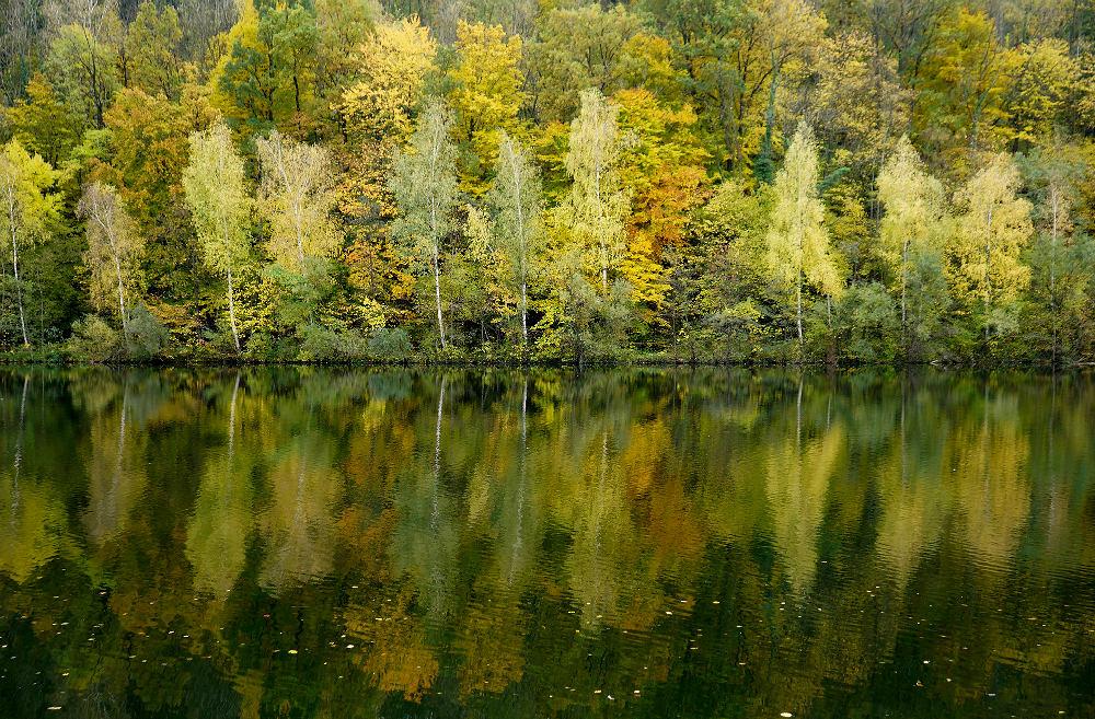 Herbst an der Traun
