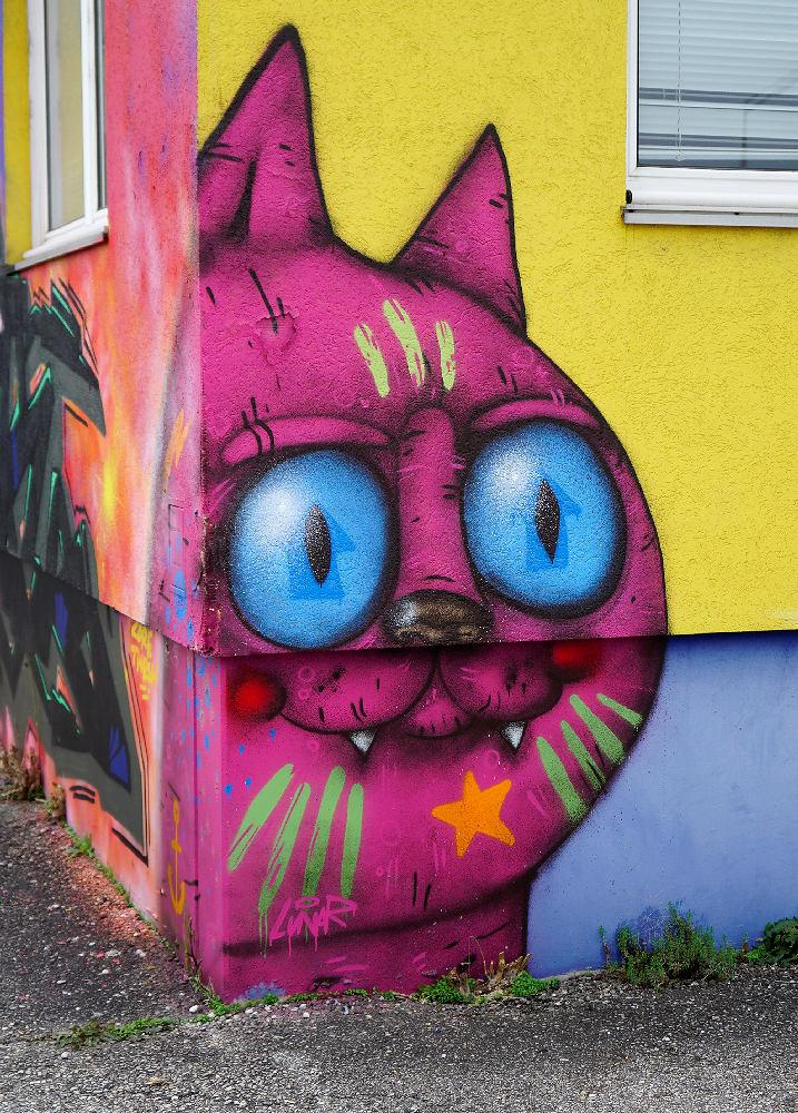 Katze ~ LinaR