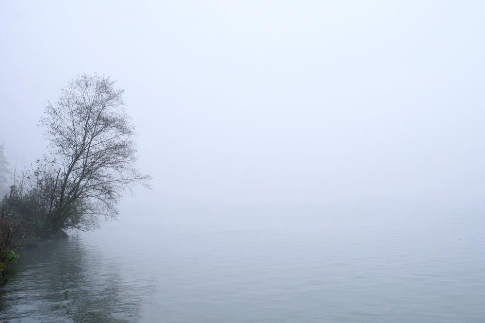 Nebel über der Donau